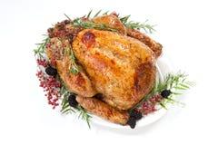 Dinde de thanksgiving sur le blanc Image stock