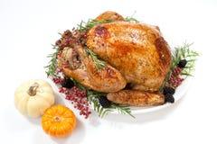 Dinde de thanksgiving sur le blanc Image libre de droits