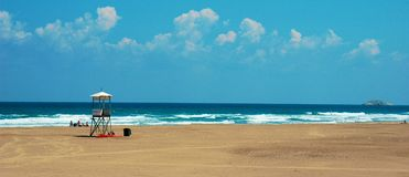 dinde sile de scène de plage Image libre de droits