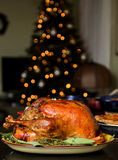 Dinde traditionnelle de thanksgiving image stock