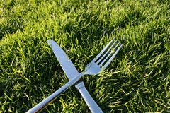 Dine Out. Fork and knife on the grass stock photo