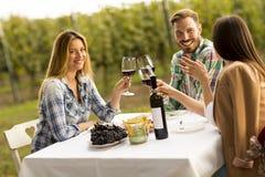 Diner in de wijngaard royalty-vrije stock afbeelding