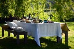 Diner en plein air photo stock