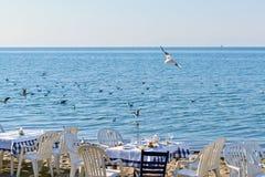 Diner op het strand Royalty-vrije Stock Foto's