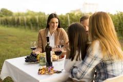 Diner in wijngaard royalty-vrije stock afbeeldingen