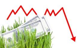 Dinero creciente en hierba Fotografía de archivo