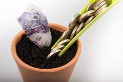 Dinero creciente en pote Fotografía de archivo libre de regalías