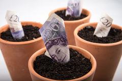 Dinero creciente en pote Imagenes de archivo