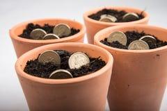 Dinero creciente en pote Fotos de archivo libres de regalías