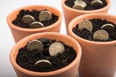 Dinero creciente en pote Imágenes de archivo libres de regalías