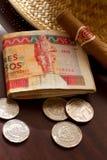 Dinero cubano Imagen de archivo libre de regalías