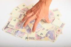 Dinero de cogida de la mano - coronas Imagenes de archivo