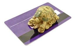 Dinero de la tortuga de Feng Shui imágenes de archivo libres de regalías