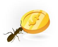 Dinero del ahorro de la hormiga por mejores épocas Imagen de archivo libre de regalías