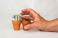 Dinero del grabbin de la mano en un pote de la terracota Fotografía de archivo