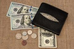 Dinero del monedero Imágenes de archivo libres de regalías