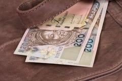 Dinero en bolso Fotos de archivo libres de regalías