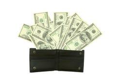 Dinero en carpeta Fotografía de archivo libre de regalías