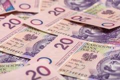 Dinero en circulación de Polonia Imágenes de archivo libres de regalías