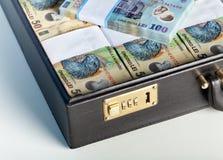Dinero en circulación rumano en una cartera Fotografía de archivo libre de regalías