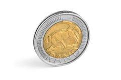 Dinero en circulación surafricano imágenes de archivo libres de regalías