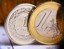 Dinero en circulación del europeo y de Polonia Foto de archivo