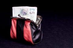 Dinero en el monedero Foto de archivo libre de regalías