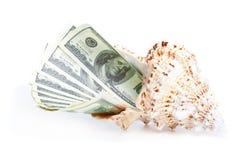 Dinero en el seashel Fotos de archivo libres de regalías