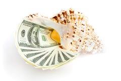 Dinero en el seashel Imagen de archivo libre de regalías