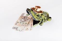 Dinero en la boca del cocodrilo, zloty polaco, PLN fotografía de archivo