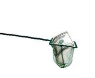 Dinero en red de pesca Imágenes de archivo libres de regalías