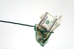 Dinero en red de pesca Imagen de archivo libre de regalías
