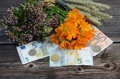 Dinero euro e hierbas médicas con los oídos del trigo Foto de archivo