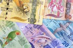 Dinero Fijian, un fondo del negocio