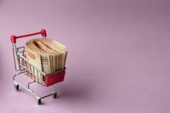 Dinero para hacer compras Fotos de archivo libres de regalías