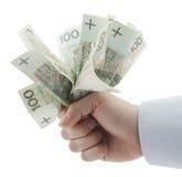 Dinero polaco a disposición. Camino de recortes incluido. Imagen de archivo libre de regalías