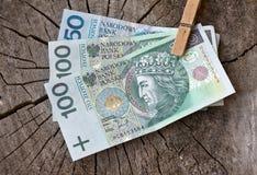 Dinero polaco en tronco Imagen de archivo libre de regalías