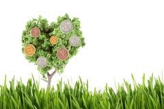 Dinero que crece en árbol Imagen de archivo libre de regalías