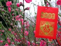 Dinero rojo del bolso foto de archivo libre de regalías