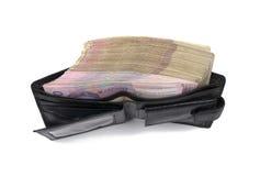 Dinero ucraniano en la cartera Foto de archivo