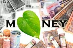 Dinero verde