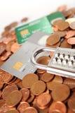 Dinero y de la tarjeta de crédito imágenes de archivo libres de regalías