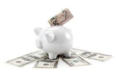 Dinero y hucha. Fotos de archivo