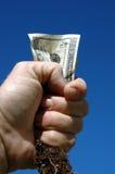 Dinero y raíz fotografía de archivo libre de regalías