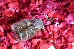 Dinero y rosas Imagenes de archivo