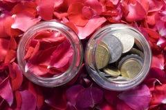 Dinero y rosas Imagen de archivo libre de regalías