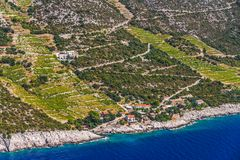 Dingac vineyards on Peljesac peninsula. Famous Croatian vineyards with Dingac grapes. Cultivated only on this small part of Peljesac peninsula near the sea in stock photography