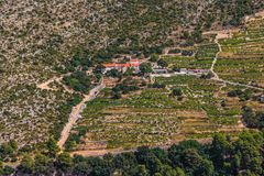 Dingac vineyards on Peljesac peninsula Royalty Free Stock Photo