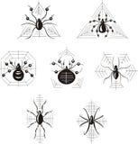 Dingbats com aranhas Foto de Stock