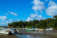 Dinghy at Little Shoal Bay Reserve Beach Auckland New Zealand Stock Images